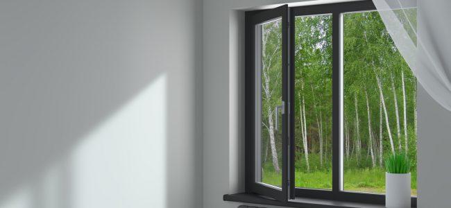 La fenêtre fixe